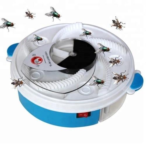قاتل الحشرات والذباب