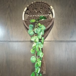 حاملة نبات جدارية